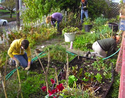 Community Gardening With God Faith Fitness Magazine